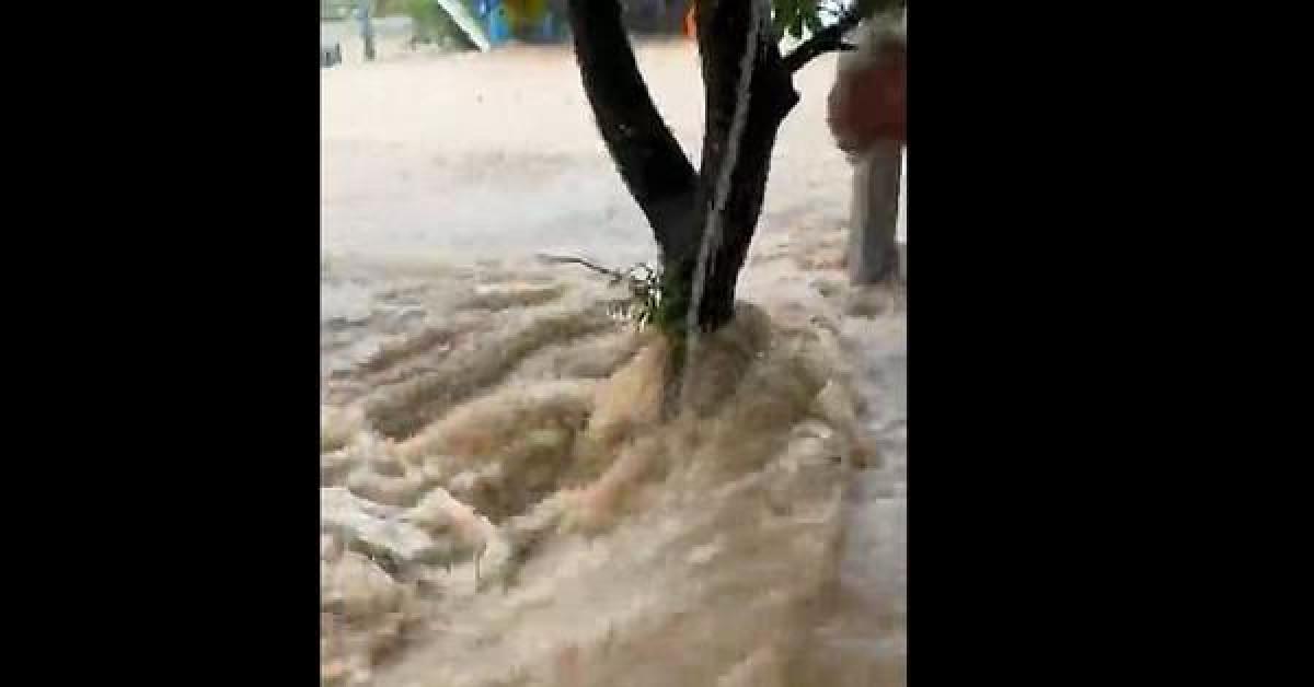 Lũ ống bất thường đổ về như thác, dân Quảng Nam tưởng vỡ đập thủy điện