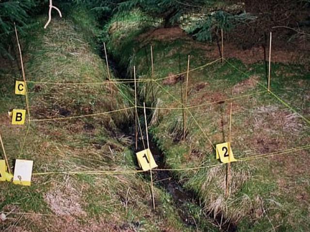 Thi thể khỏa thân của gái mại dâm trong rừng và bí ẩn 15 năm