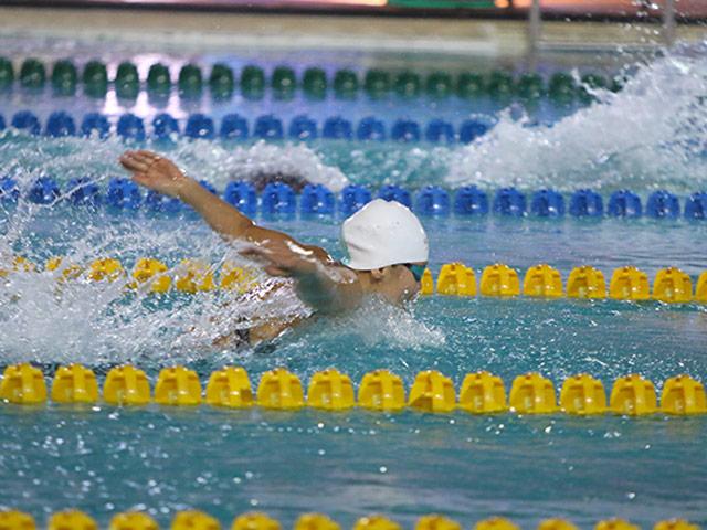 """Ánh Viên vẫn """"làm mưa làm gió"""" môn bơi, giành 12 HCV giải vô địch quốc gia"""