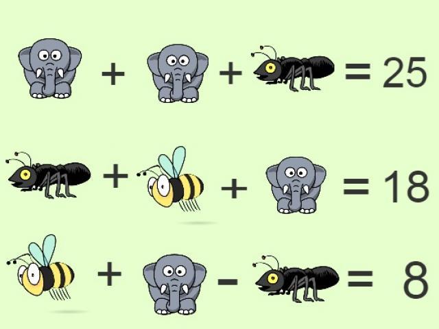 Khởi động tuần mới với câu đố kiến và voi