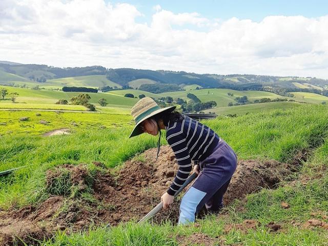 Cô gái Hà Nội bỏ phố theo chồng Tây về quê làm trang trại, chăn 300 con bò