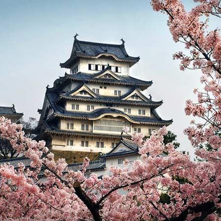 Lâu đài tuyệt đẹp có giếng nước 'ma ám' ở Nhật - 1
