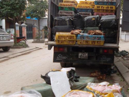 HN: Bắt 4 tấn nầm lợn, gà thải đang về Hà Vĩ - 1