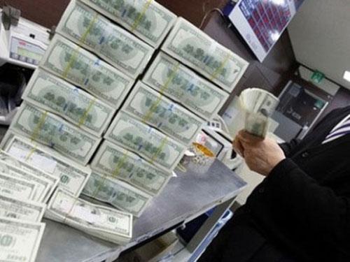 Ngân hàng Nhà nước ròng rã mua ngoại tệ - 1