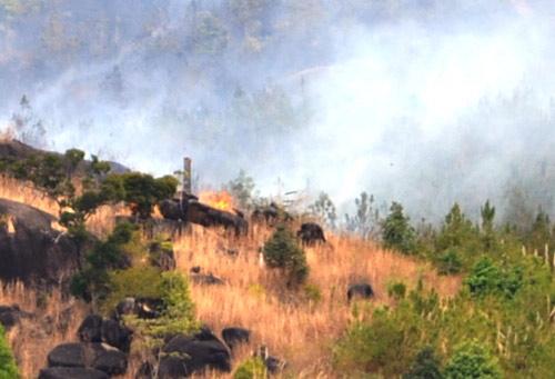 Rừng phòng hộ ở Gia Lai cháy dữ dội - 1
