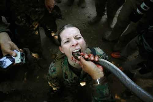 Chặt đầu rắn uống máu trong tập trận quốc tế - 1