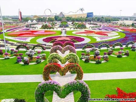 Thăm vườn hoa tự nhiên lớn nhất hành tinh - 1