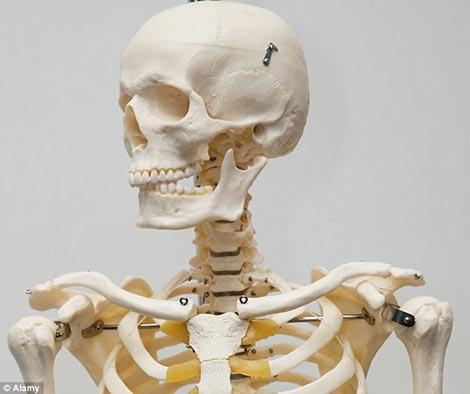 Nhật: Sống với bộ xương của mẹ suốt 3 năm - 1