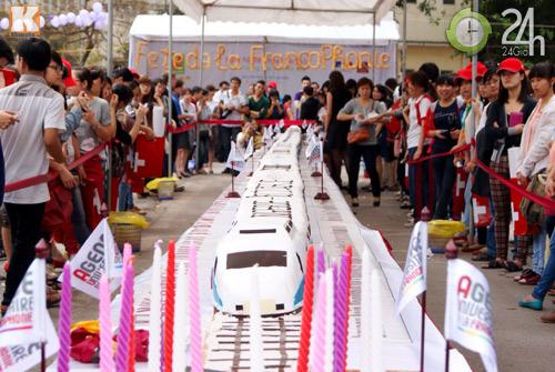 Chiếc bánh gato lớn nhất Việt Nam - 1