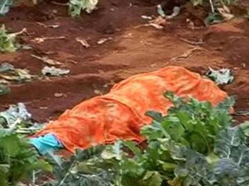 Ấn Độ: Hổ vồ chết người, 45 trường học đóng cửa - 1