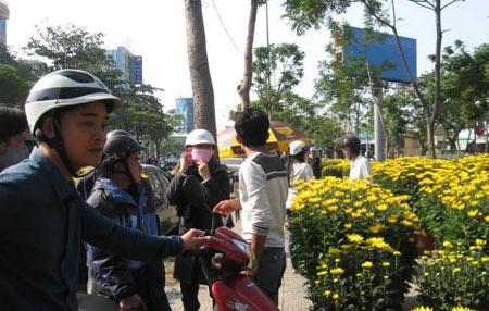 """Đà Nẵng: Người bán hoa Tết """"méo mặt"""" - 1"""