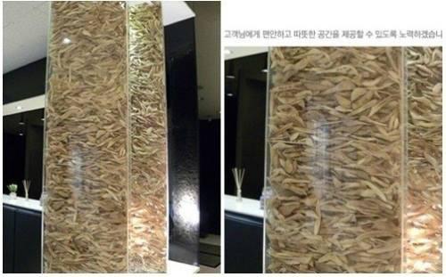 HQ: Thẩm mỹ viện dựng tháp bằng xương khách hàng - 1