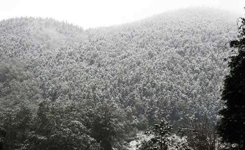 Lại xuất hiện mưa tuyết ở Sapa - 1