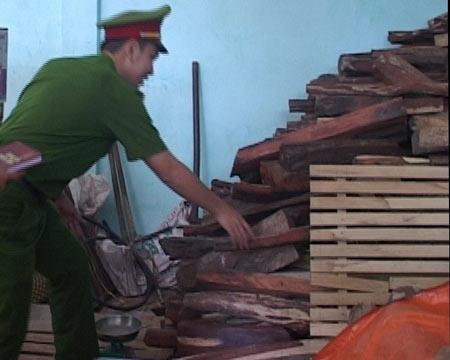 """Hơn 4 tấn gỗ trắc """"vô chủ"""" tại… nhà dân - 1"""