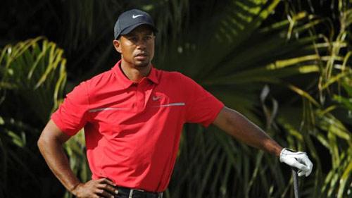Golf: Tiger Woods sắp mất ngôi số 1 thế giới - 1
