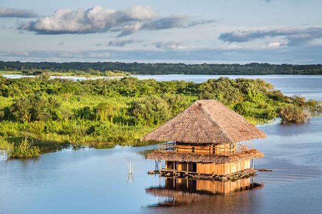 10. Iquitos, Peru (Ảnh: Christian Vinces/Shuttershock).