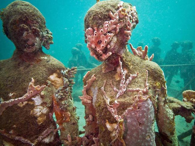 1. Grenada: Vùng biển nàymang đến những món ăn hảo hạng ở trên bờ và thế giới thủy sinh phong phú dưới mặt nước gồm cả một công viên điêu khắc trong lòng đại dương.
