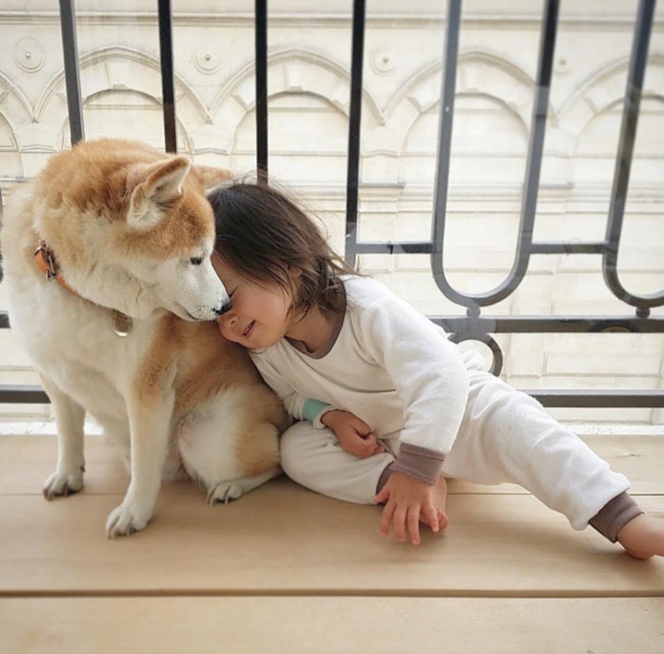 Bộ ảnh cho thấy chó là người bạn không thể thiếu của bé - 1