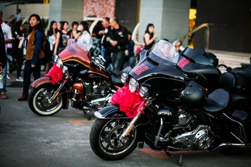 Lễ rước dâu độc đáo của dàn xe Harley-Davidson 'khủng' - 1