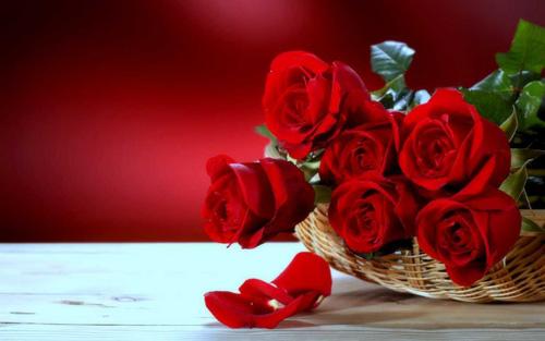 Gợi ý chọn quà Valentine ý nghĩa - 1