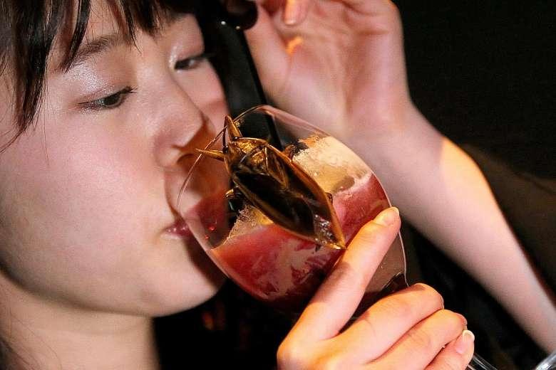 Thưởng thức đồ uống với côn trùng ngày Valentine - 1