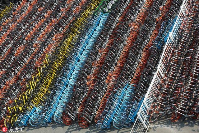 """Hoa mắt """"nghĩa trang"""" 4.000 xe đạp ở Trung Quốc - 1"""
