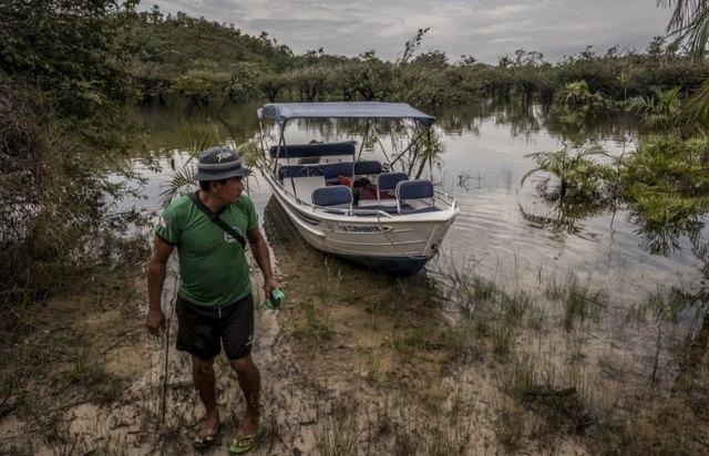Bãi tắm kì lạ đầy muỗi và kiến giữa rừng rậm Amazon - 1