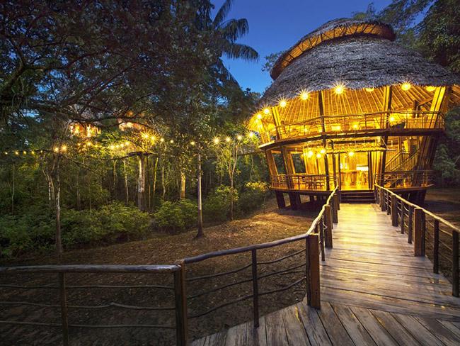 Xa hơn nữa, tại đất nước Peru huyền bí chính là khách sạn Treehouse Lodge, gồm một chuỗi mười căn nhà cây có thiết kế phi thường. Tất cả đều có tầm nhìn tuyệt vời ra sông Yarapa và Cumaceba, một hoạt động đặc biệt ở đây chính là các khóa tu yoga thực hiện ở ngôi nhà chính, lối đi bộ hay thậm chí các cây cầu có mái che.