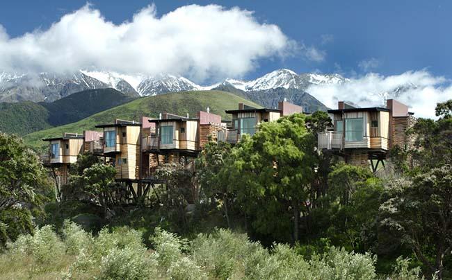 Được khuyên nên đến một lần trong đời, khách sạn Hapuku Tree Houses được cho là có tầm nhìn đẹp nhất New Zealand. Khách sạn nằm giữa dãy Kaikoura và Thái Bình Dương.