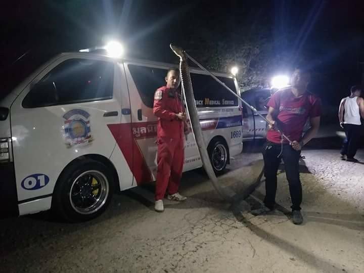 Thái Lan: Kinh hãi hổ mang chúa khổng lồ 5 mét mò vào nhà dân - 1
