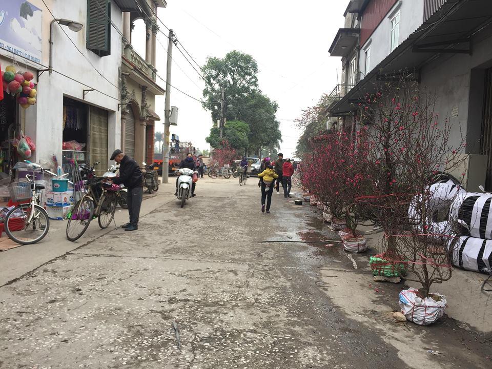 Dân làng Quan Độ phủ bạt lên nóc nhà đón Tết sau vụ nổ rung chuyển Bắc Ninh - 1