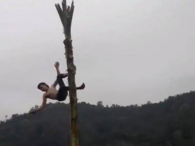 Trò thách đố ngớ ngẩn nhất năm: Leo ngọn chuối cao gần chục mét và cái kết