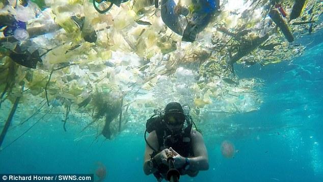 """Kinh hoàng cảnh biển Bali bị con người làm cho """"nghẹt thở"""" - 1"""