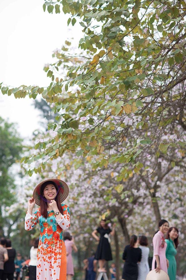 Tháng 3 về, hoa ban lại nở rộ hai bên đường Bắc Sơn, Hoàng Diệu (Hà Nội).