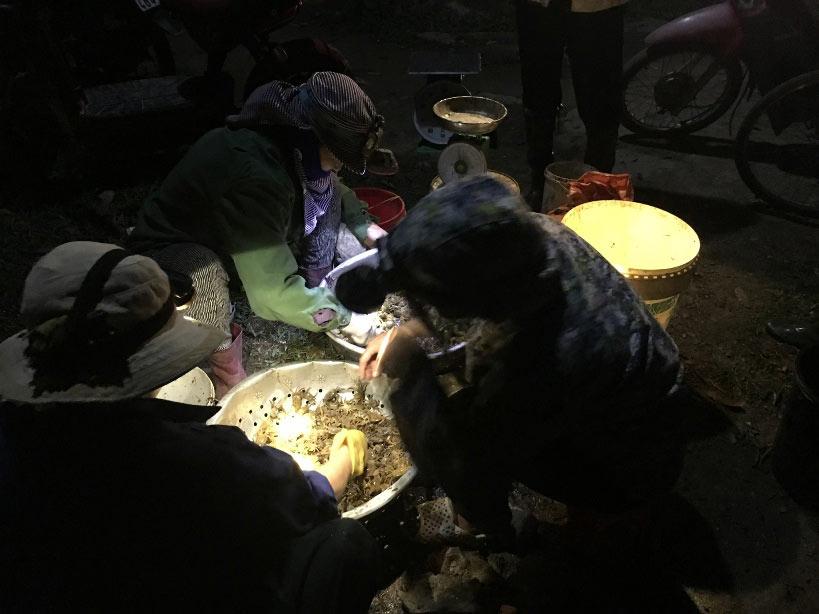 """Cua đồng tăng giá """"sốc"""", người dân đổ ra ruộng săn trong đêm - 1"""