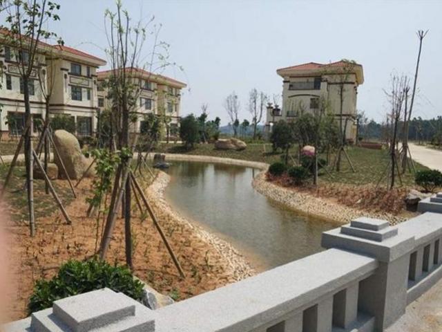 """Đại gia xây 258 biệt thự tặng cho cả làng rồi nhận """"cái kết đắng"""" vì lý do không ai ngờ"""