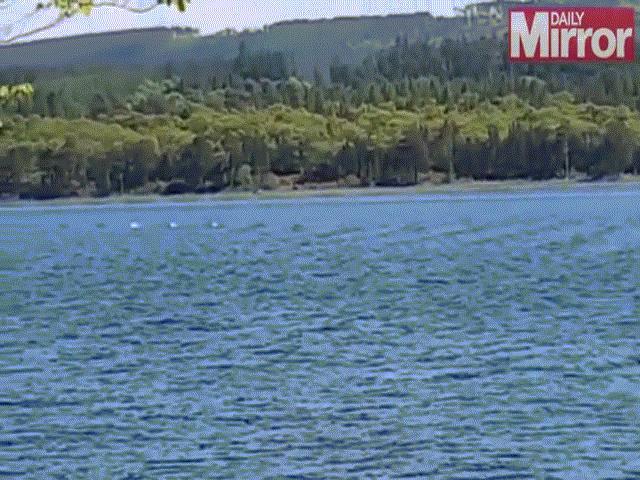 Video: Quái vật hồ Loch Ness tái xuất cùng gia đình?
