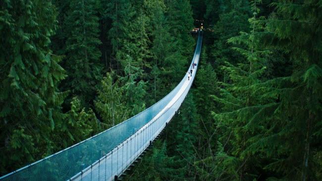 Cầu treo Capilano, Canada