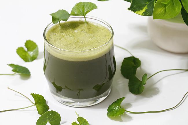 Sinh tố rau má vừa mát lại cực thơm ngon là thức uống hoàn hảo cho mùa hè - 1