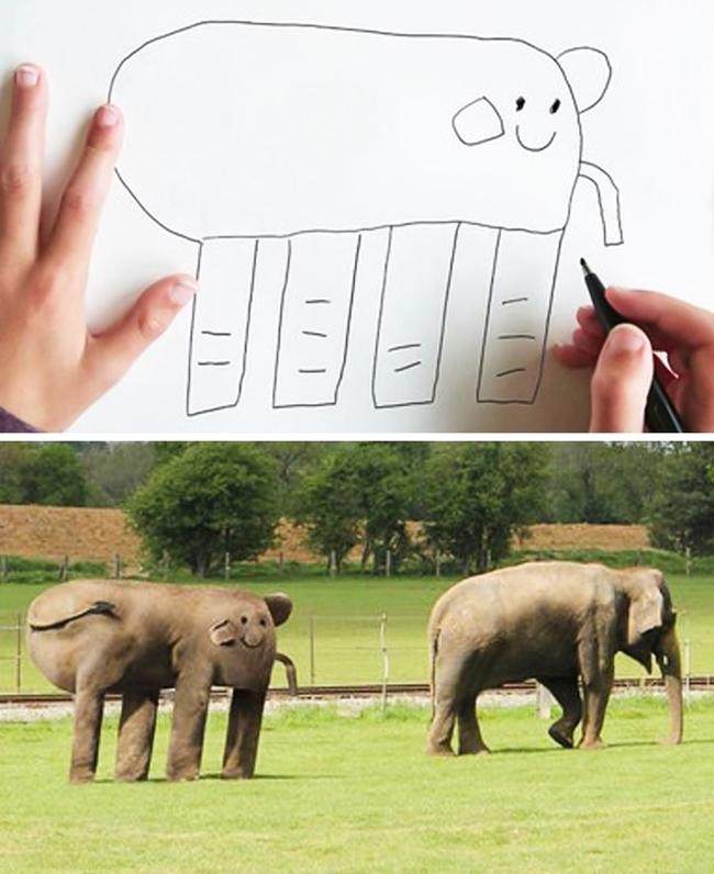 Có voi y như hình vẽ luôn nhé.
