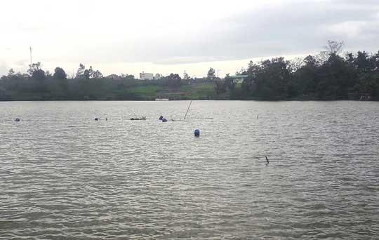 Sau khi an táng vợ chết bất thường tại Trung tâm GDTX Lâm Đồng, chồng chết dưới hồ - 1