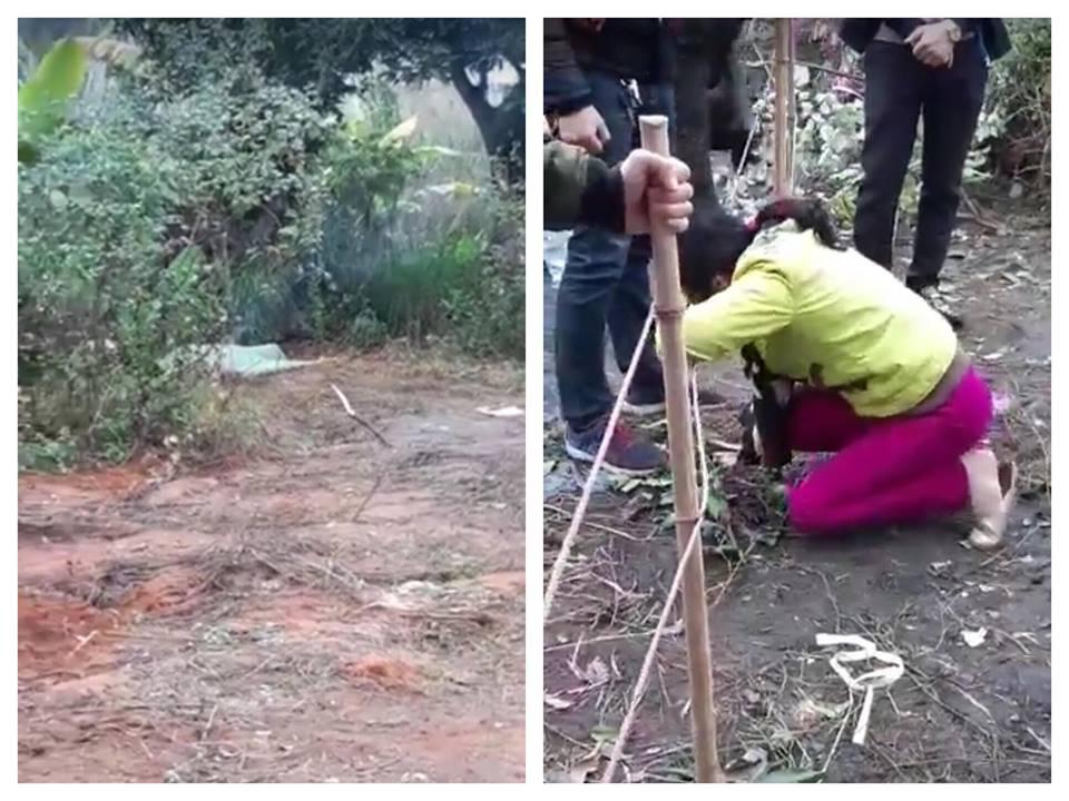 Công an lên tiếng vụ con chết bí ẩn ngoài vườn, mẹ khóc thương thảm thiết - 1