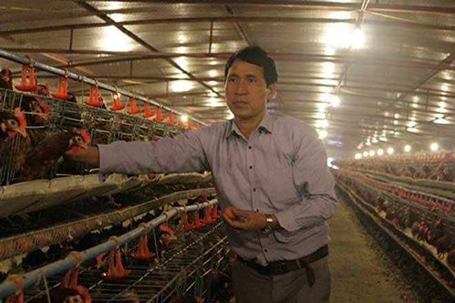 Cho gà ở chuồng lạnh, lớn nhanh lại đẻ sòn sòn, lãi 2 tỷ đồng/năm - 1