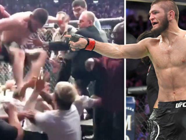 Khabib hạ nhục McGregor, loạn đả UFC: 1 cú đá mất toi 11 tỷ đồng