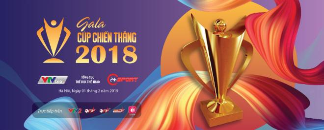 Trở về từ Asian Cup, đội tuyển Việt Nam sẽ giành Cúp Chiến thắng ? - 1