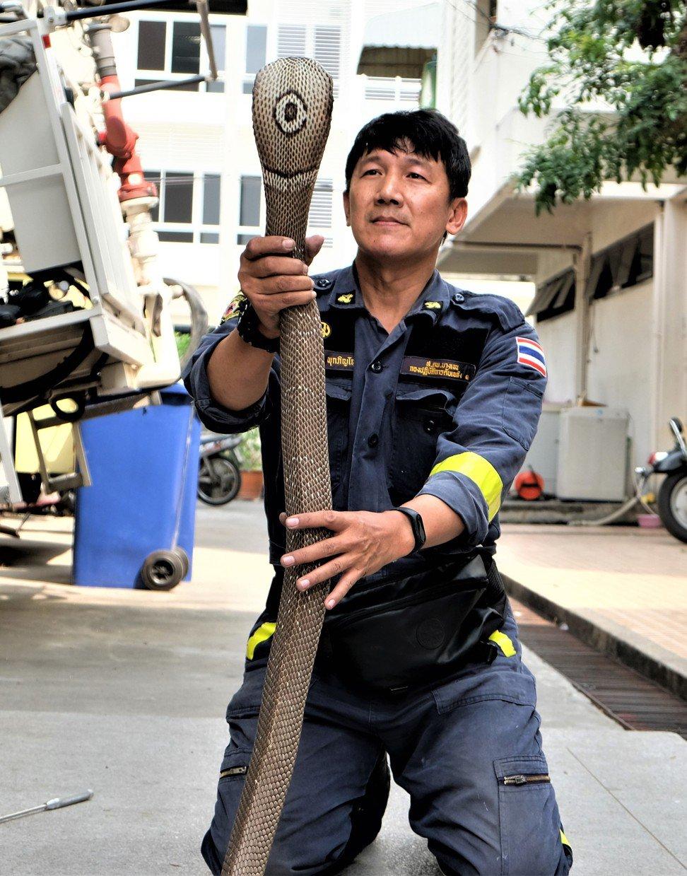 """""""Người Nọc Độc"""" Thái Lan bị rắn cắn hỏng tay vẫn ngày ngày lao đi bắt rắn - 1"""