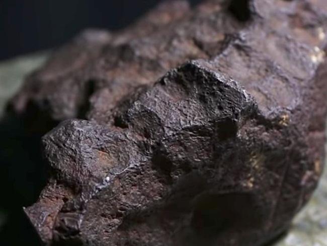 Tháng 10/2018, một người đàn ông ở Michigan, Mỹ đưa viên đá nặng gần 10kg đến nhờ giáo sư MonaSirbescu (Đại học Central Michigan) kiểm định và nhận điều bất ngờ.