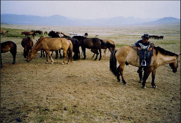 Mông Cổ bí ẩn và đầy huyền bí là điểm đến không thể bỏ qua của mọi du khách ưa khám phá - 5