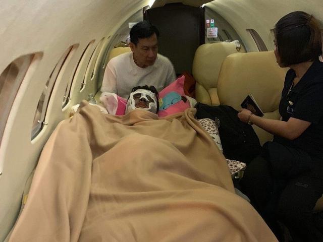 Việt kiều bị tạt axit, cắt gân chân lên chuyên cơ qua Canada