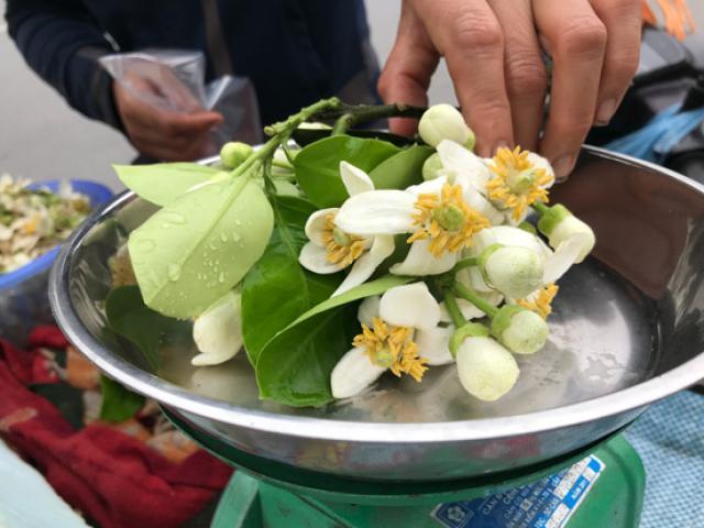 Đào phai, mai tàn, dân Hà thành chuộng thứ hoa quê thơm nức giá nửa triệu/kg